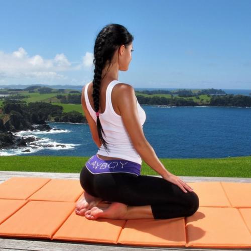 Yoga in General
